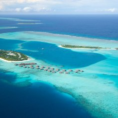 Отель-аквариум Conrad Maldives Rangali Island