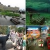 Парки современного периода. ТОП-10 самых необычных парков в мире