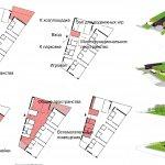 Функционально-планировочная организация детского сада Детский сад в Амштеттен-Э